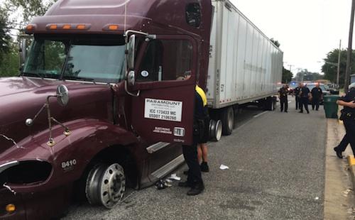 truck driver tasered