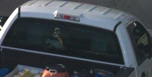 distracted driver caught